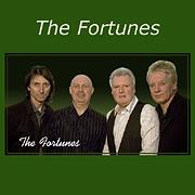 The Fortunes website